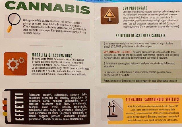 Cannabis effetti